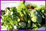 Четыре зелёных источника здоровья